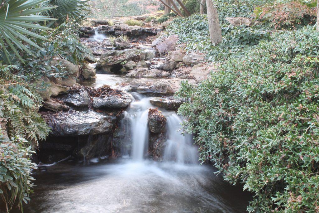dallas-botanical-garden